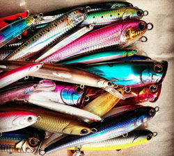 Hardbody lures from GT Lures including stickbaits, poppers, minnows, divers, squid profiles and squid jigs