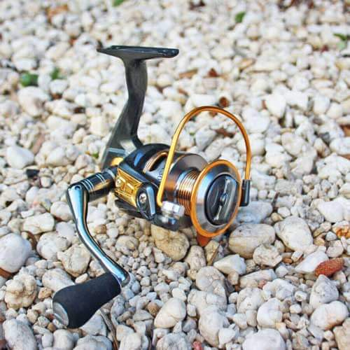 Spinning reels for fresh and saltwater fishing