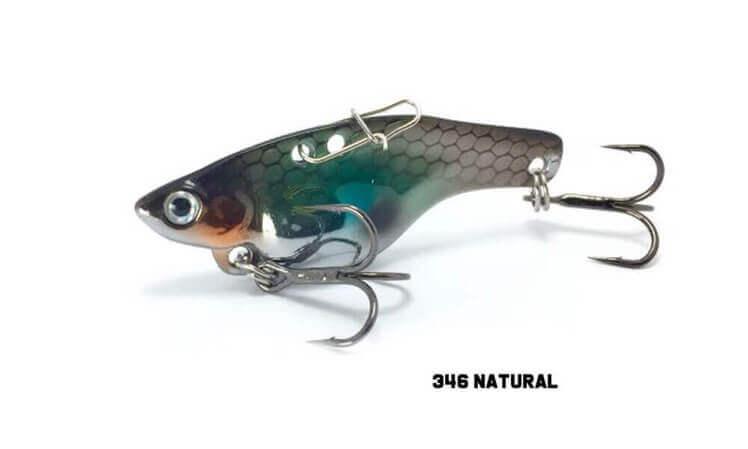 Fish Inc Guppy 49